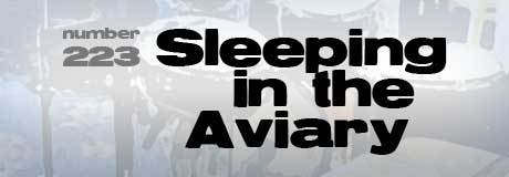 Sleeping in the Vviary on Band in Boston